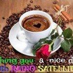 RADIO SATELLITE CAFE2
